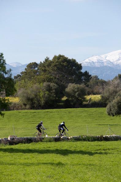 Mallorca im Frühjahr - Saisonstart der Rennradfahrer, Mountainbiker und Triathleten - Bild 1