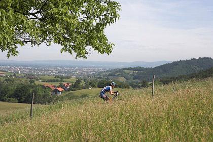 Agnes allein über Freiburg
