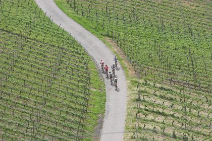 Worldclass Mountainbike Marathon ChallengeWorldclass Mountainbike Marathon Challenge