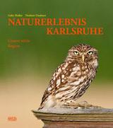Fotoband NATURERLEBNIS KARLSRUHE: Feuersalmander