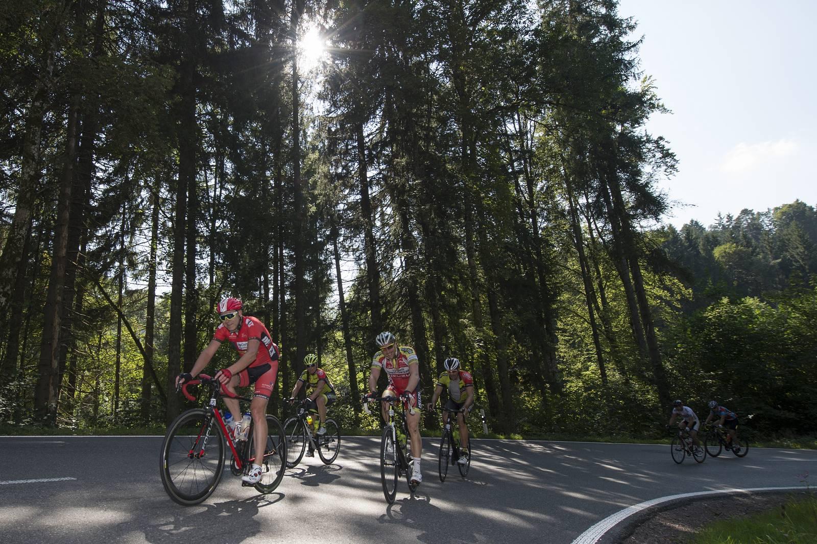 World Press Cycling Championships
