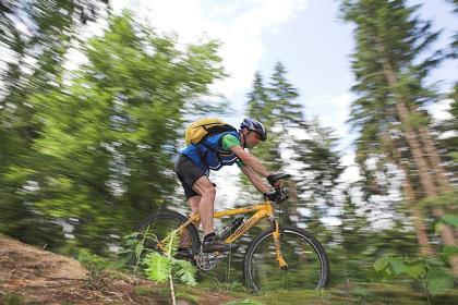 Mountainbike-Sport im Pfälzerwald - Dahner Felsenland - Biosphärenreservat - Burgenland - Wasgau