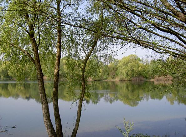 Buchtzigsee