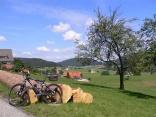 Blick auf Sulzbach