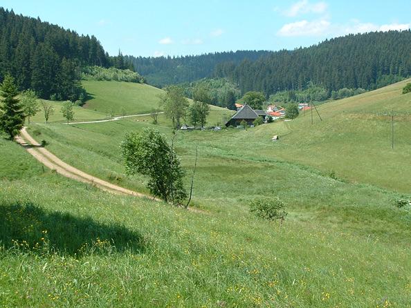Vorderschützenbachtal