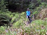 Trail nach Hundsbach
