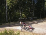 Trotz GPS-Gerät immer eine Papierkarte mitnehmen, denn Wegsperrungen wegen Holzfällung können eine Umplanung der Tour erfordern.