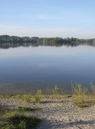 Knielinger See