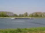 Rheinufer beim Tulladenkmal