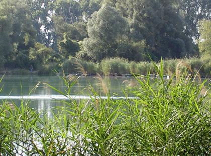Baggersee Neureut