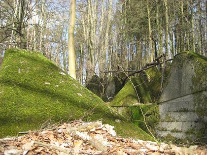 Panzersperre bei Lambsborn
