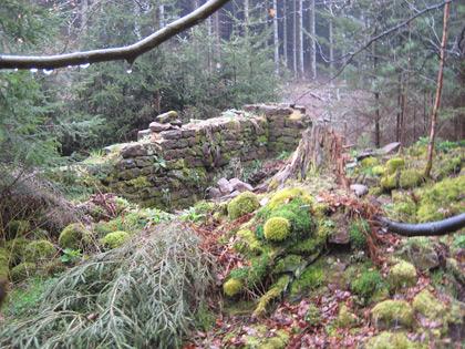 Mauerreste des ehemaligen Langenthaler Hofs