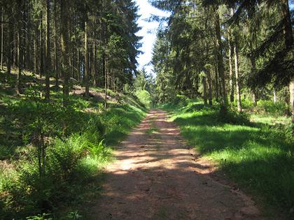 Mühlenweg im Wallhalbtal
