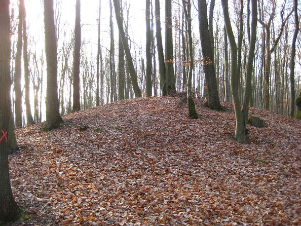 Keltisches Hügelgrab bei Steinbach am Glan