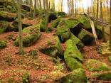 riesige Sandsteinblöcke an den Hängen der Karlstalschlucht: