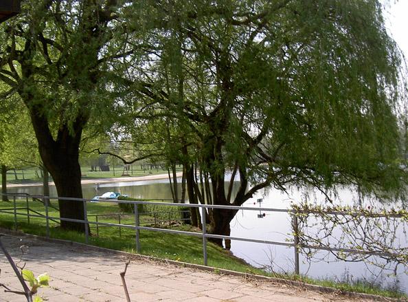 Baggersee Buchtzig