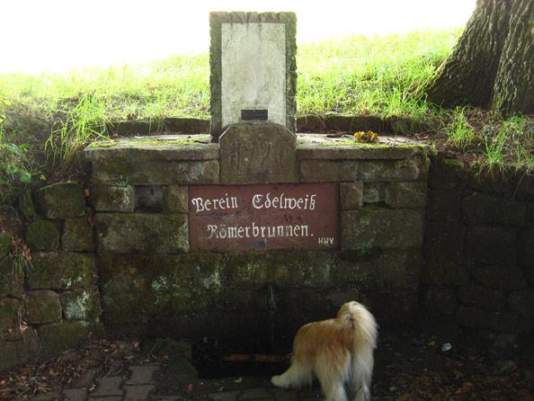 Römerbrunnen bei der dicken Eiche