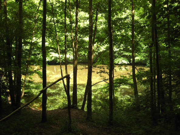 Hodenbachweiher