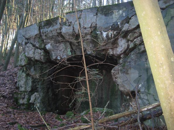 Westwallbunker bei Lambsborn