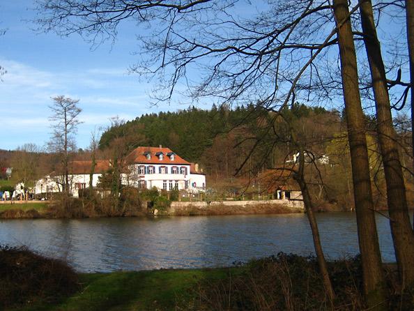 Niederwürzbacher Weiher mit Annahof