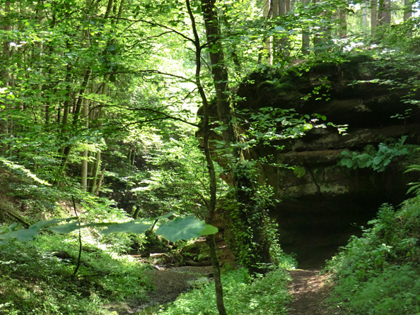 Felsen im Heilbachtal