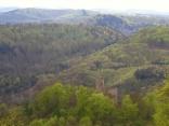 Blick vom Winschertfels auf die Burg Gräfenstein