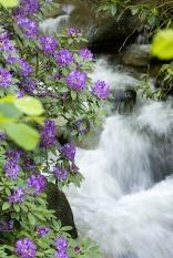 Geroldsauer Wasserfall  (Foto Dahuu)