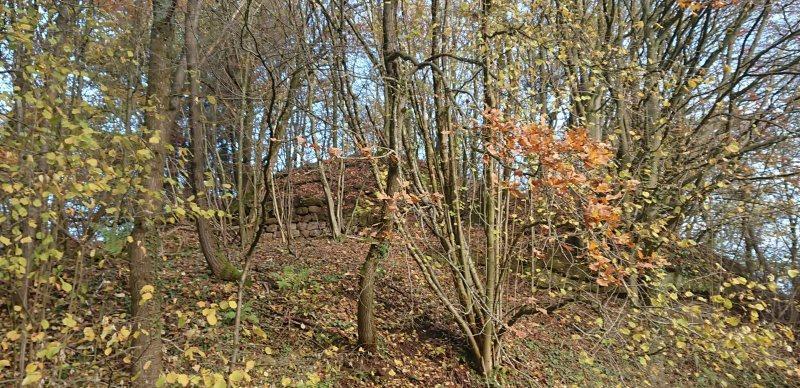 Hügel mit Mauerresten der Burg Wiesbach