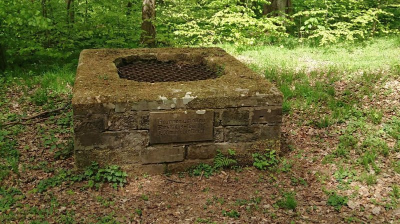 Brunnen am alten Forsthaus (Karlsberg)