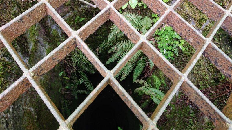 Brunnen am alten Forsthaus (Gitterabdeckung)
