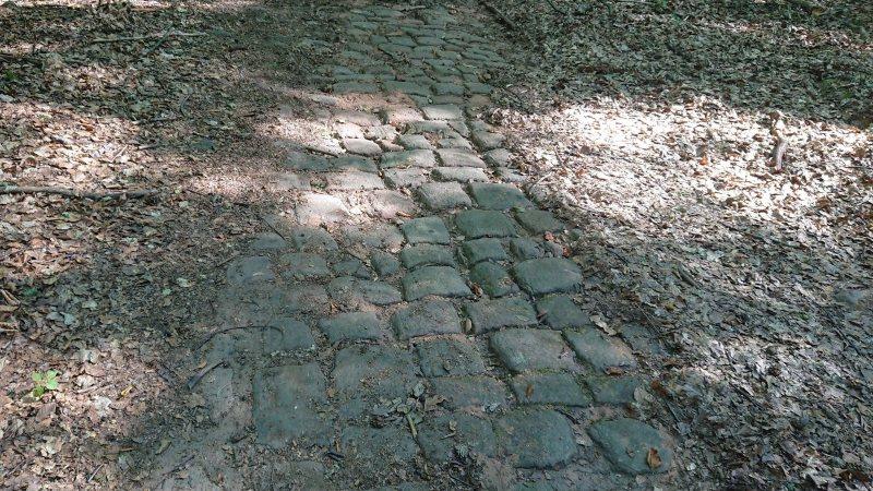 gepflasterter Weg zum ehem. Steinbruch bei Bruchmühlbach