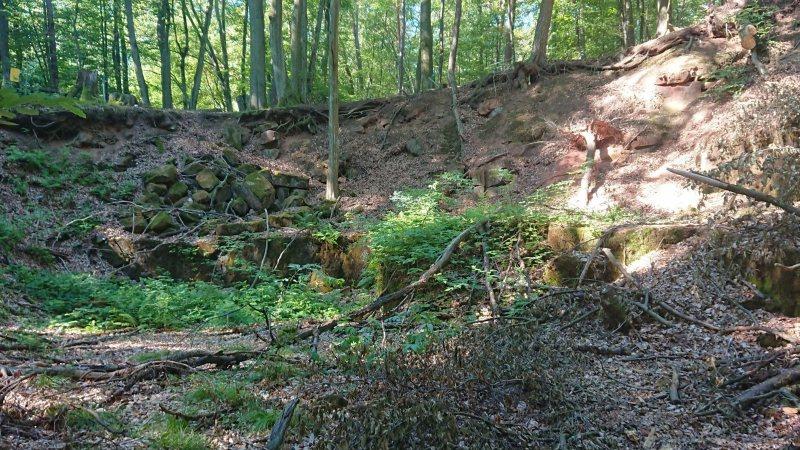 Ehem. Steinbruch bei Bruchmühlbach