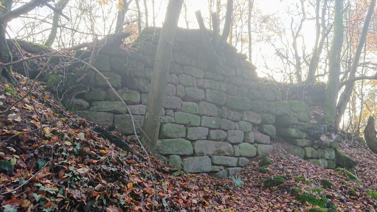 Mauerreste der Burg Wiesbach